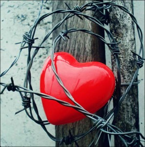 heart protected